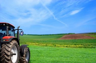 Starten als zzp'er in de agrarische sector