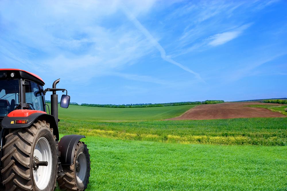 Werken als zzp-er in de land-en-tuinbouw
